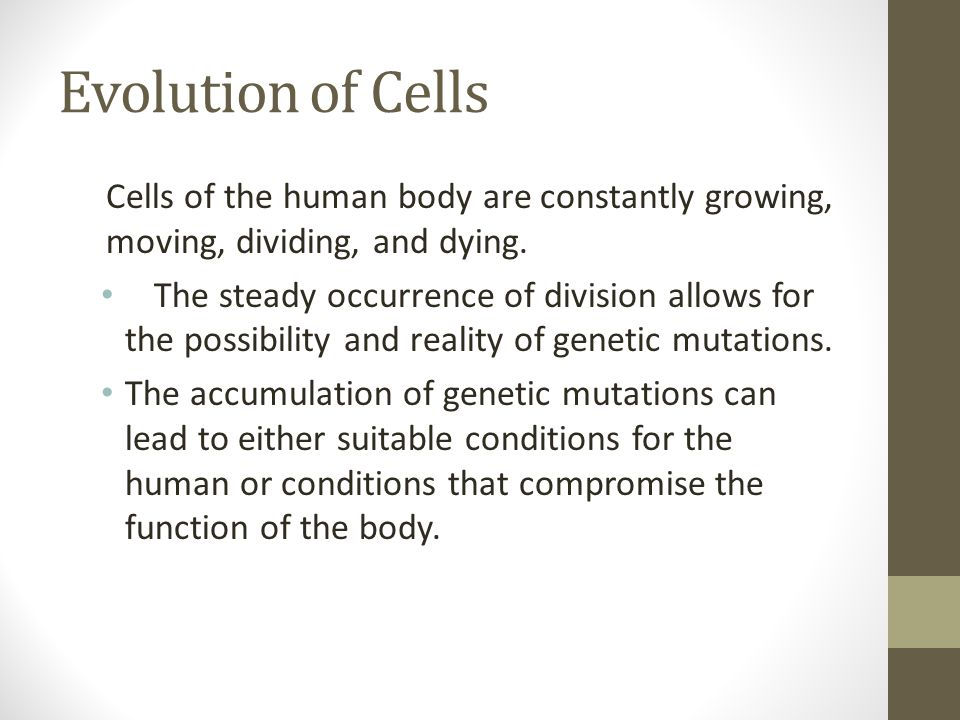 Evolution of Cells Cells of the human body are constantly growing, moving, dividing, and dying.