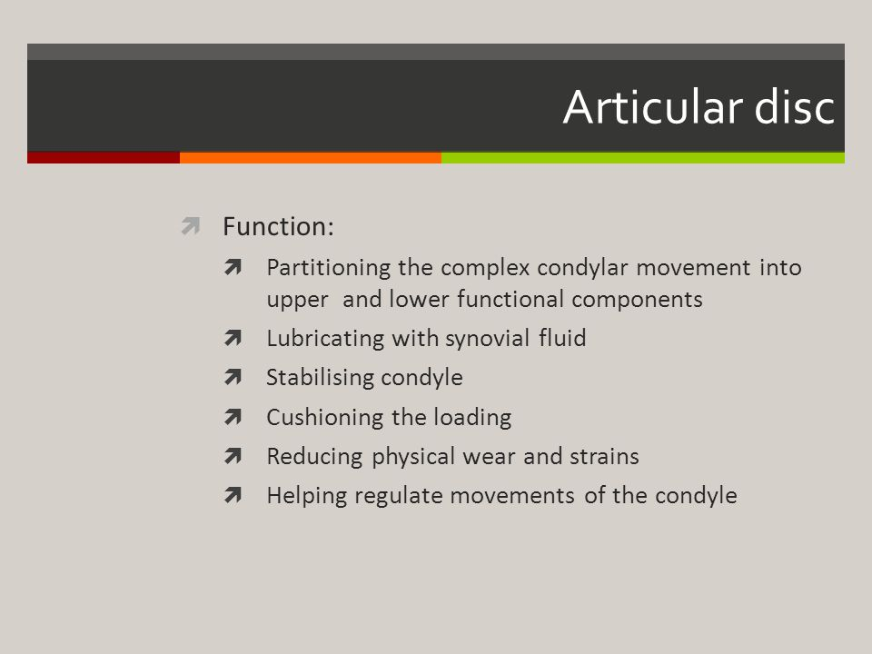 Articular disc Function: