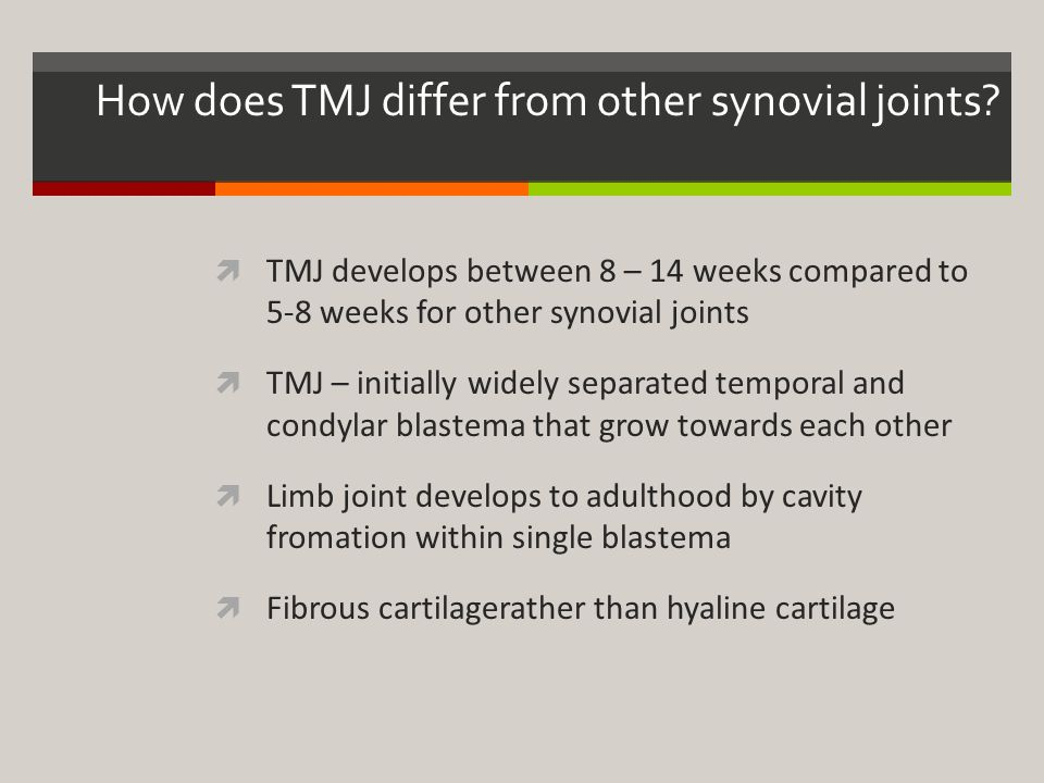 How does TMJ differ from other synovial joints