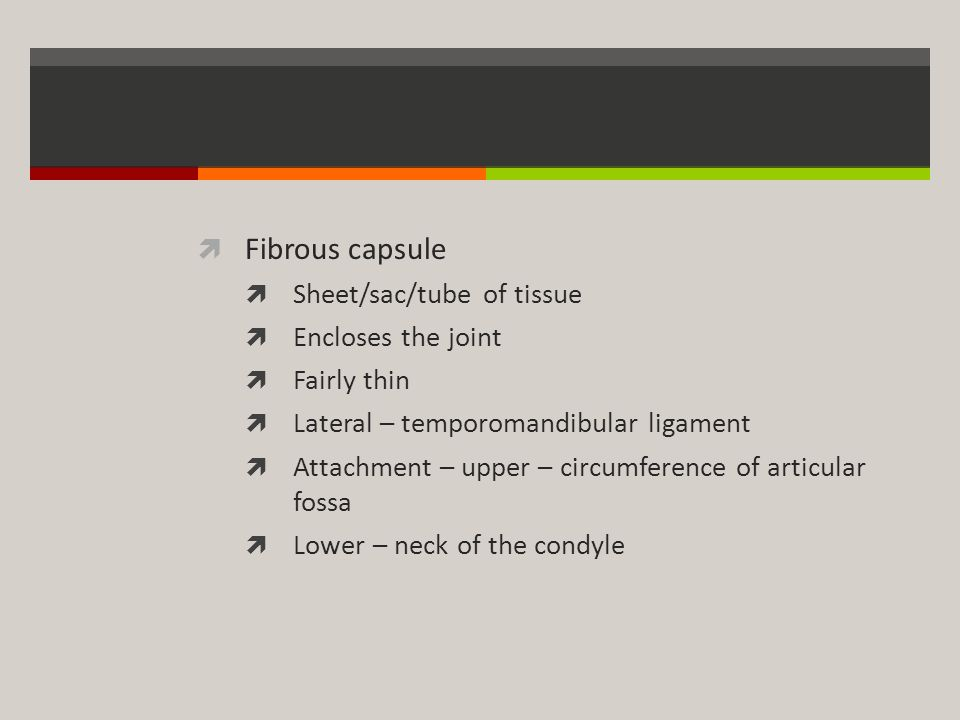 Fibrous capsule Sheet/sac/tube of tissue Encloses the joint