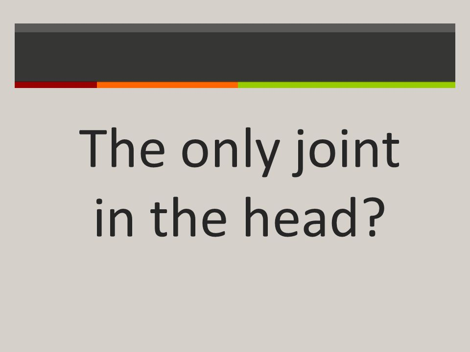 The only joint in the head