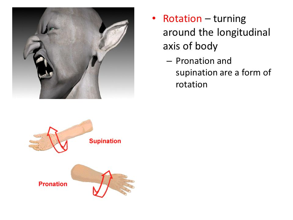 Rotation – turning around the longitudinal axis of body