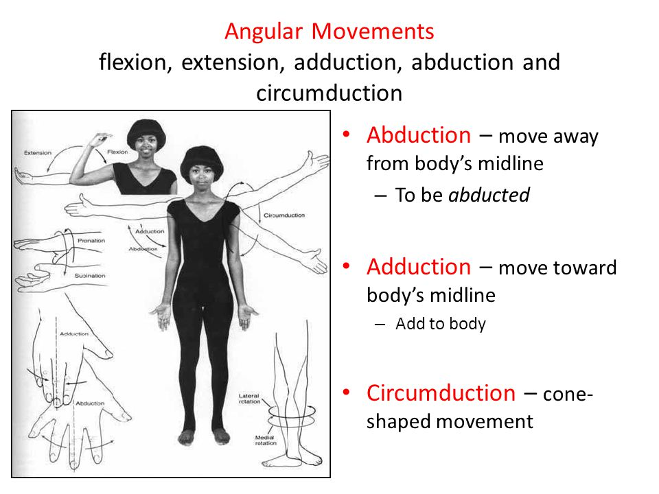 Abduction – move away from body's midline