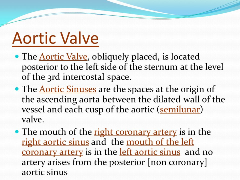 Aortic Valve The Aortic Valve, obliquely placed, is located posterior to the left side of the sternum at the level of the 3rd intercostal space.