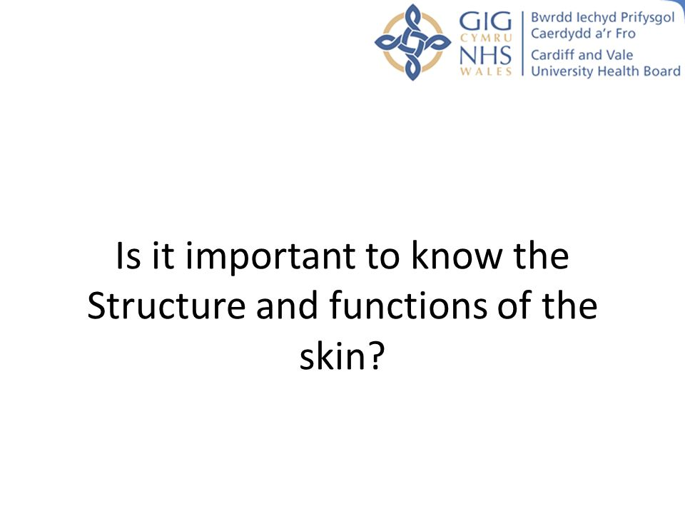 Is it important to know the Structure and functions of the skin