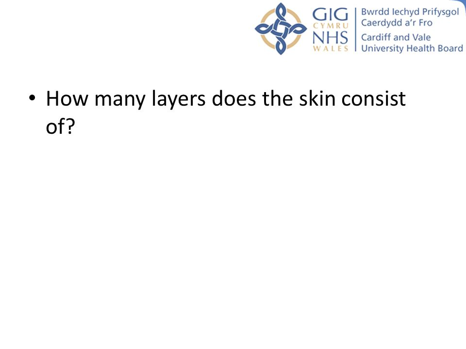 How many layers does the skin consist of