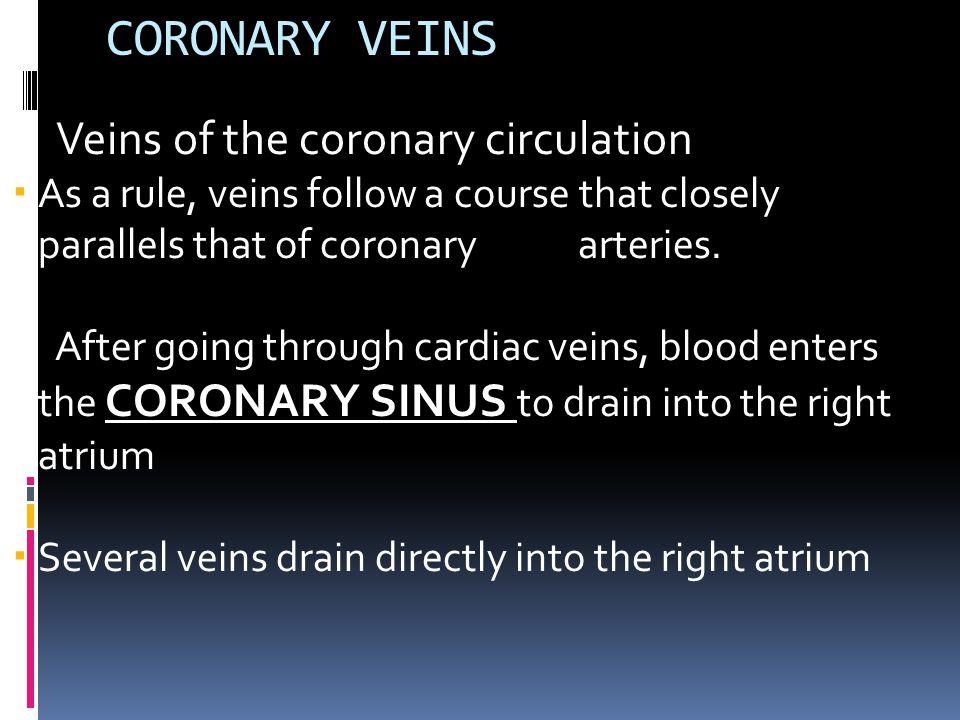 CORONARY VEINS Veins of the coronary circulation