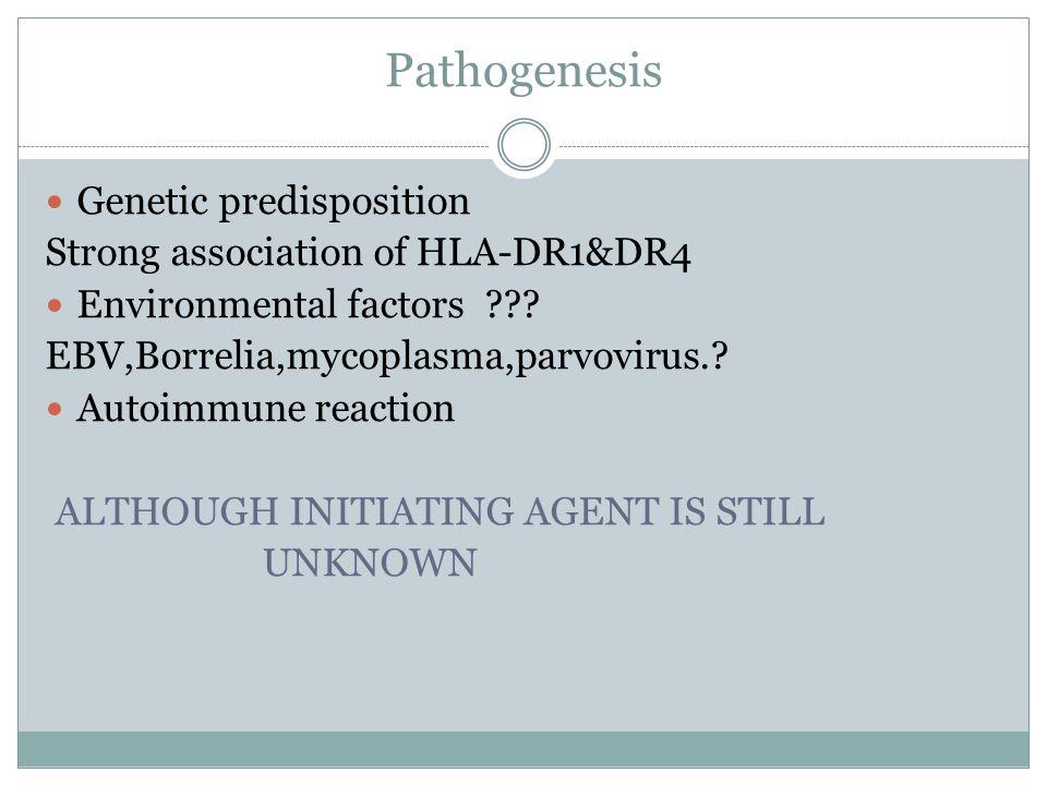 Pathogenesis Genetic predisposition Strong association of HLA-DR1&DR4