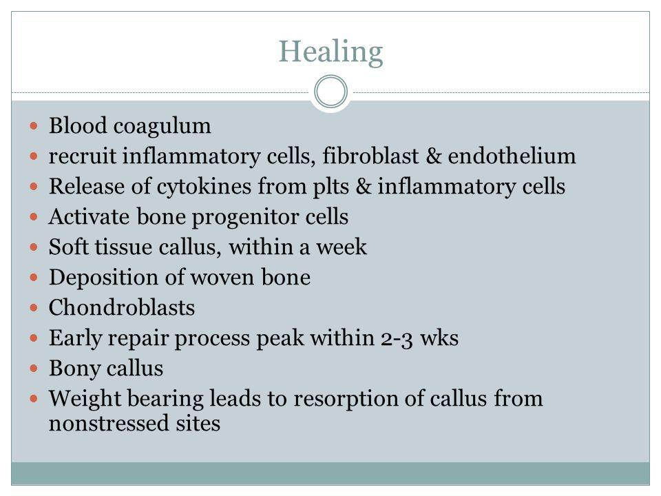 Healing Blood coagulum