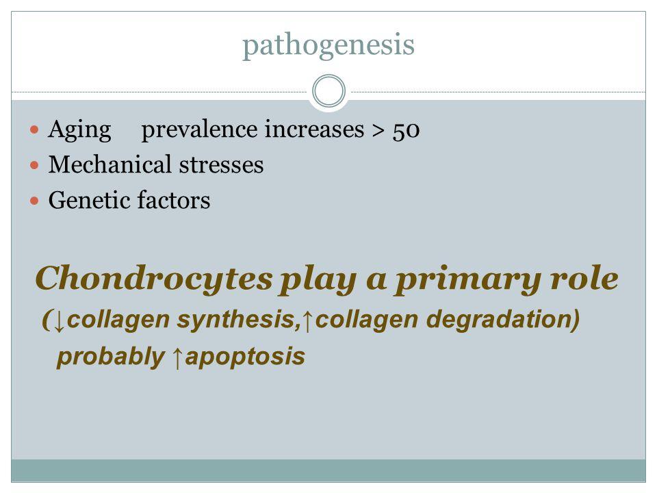 pathogenesis (↓collagen synthesis,↑collagen degradation)