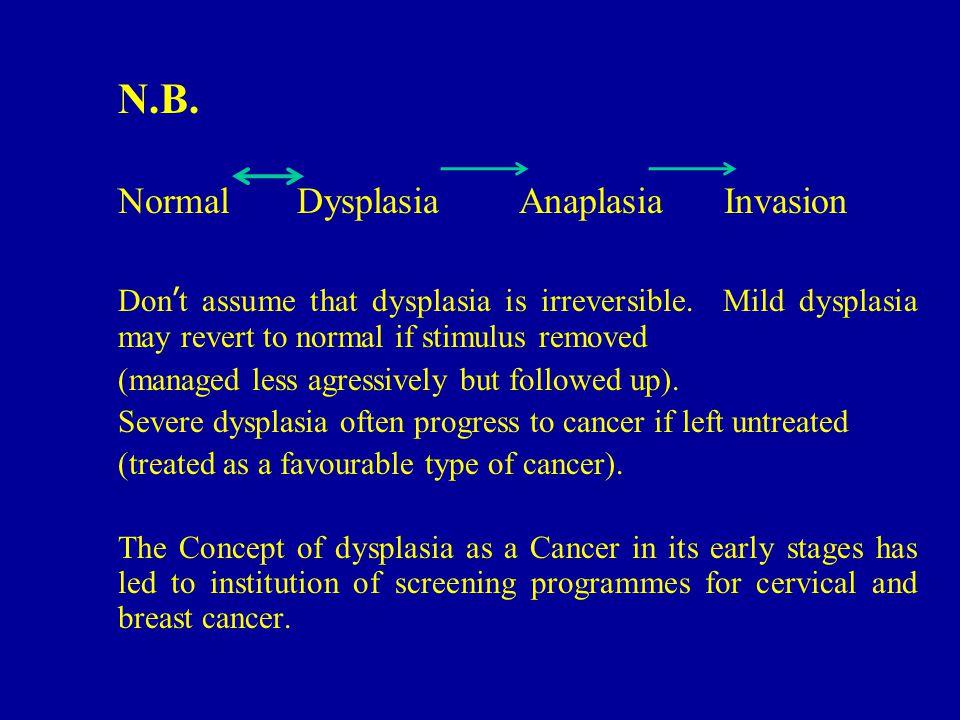 N.B. Normal Dysplasia Anaplasia Invasion