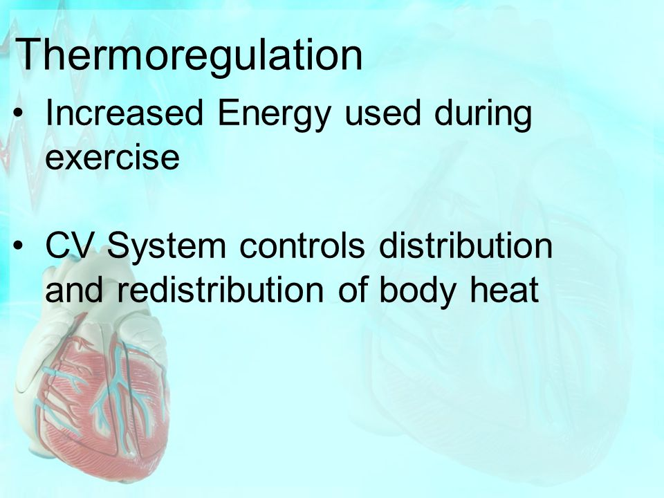 Thermoregulation Increased Energy used during exercise