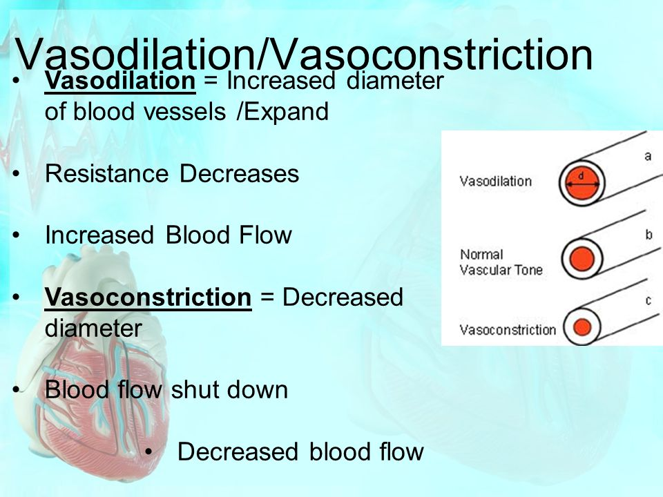 Vasodilation/Vasoconstriction