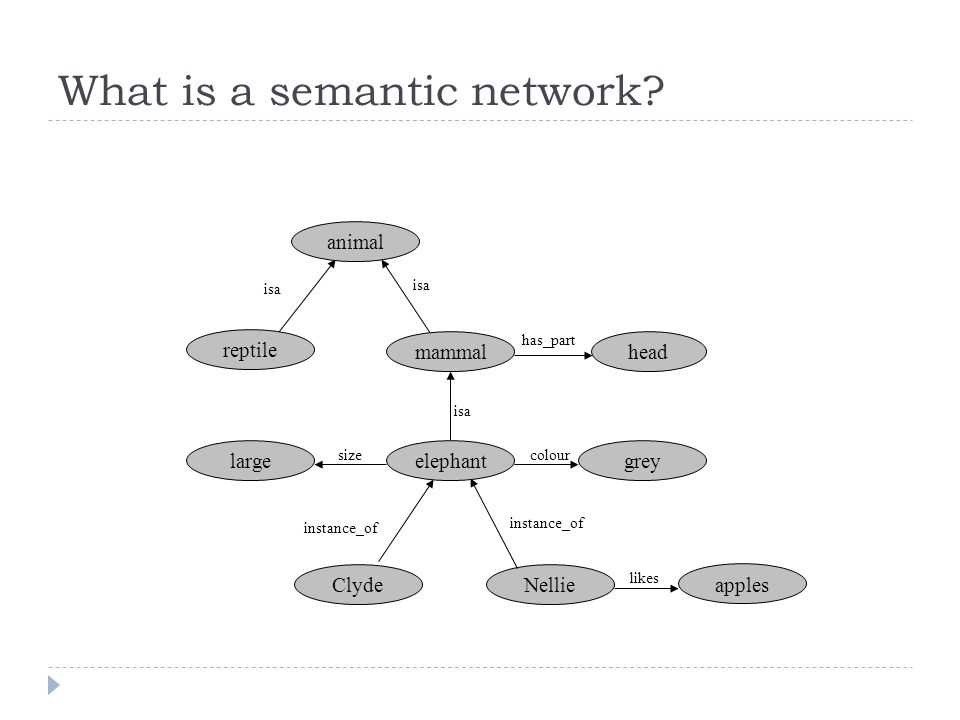 What is a semantic network