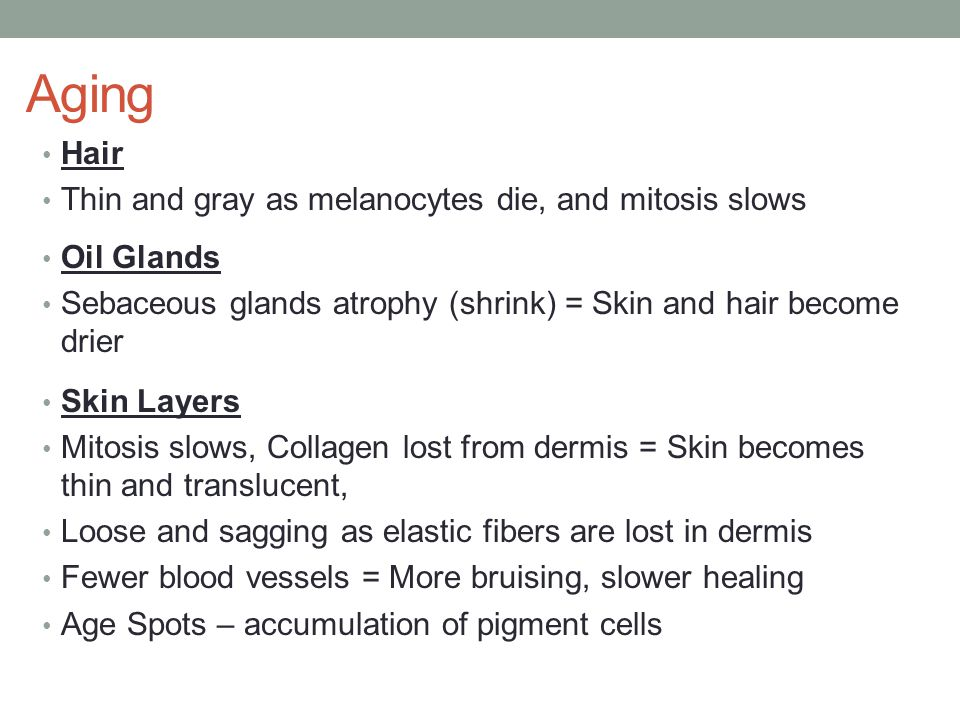 Aging Hair Thin and gray as melanocytes die, and mitosis slows