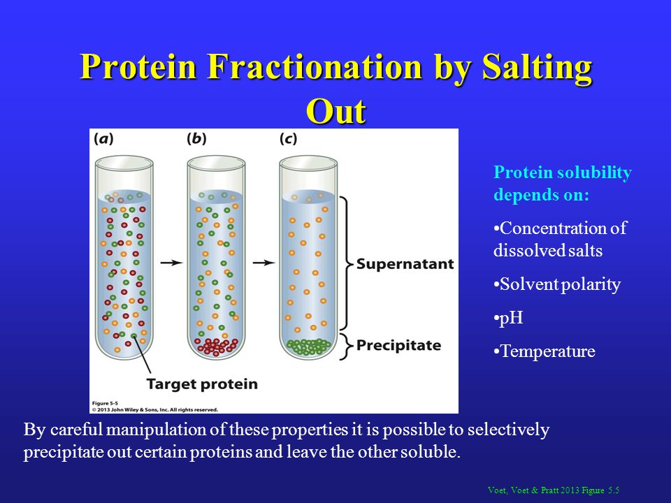 Protein Fractionation by Salting Out