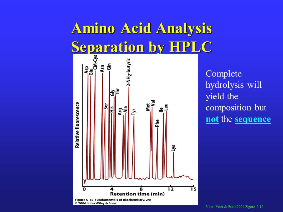 Amino Acid Analysis Separation by HPLC