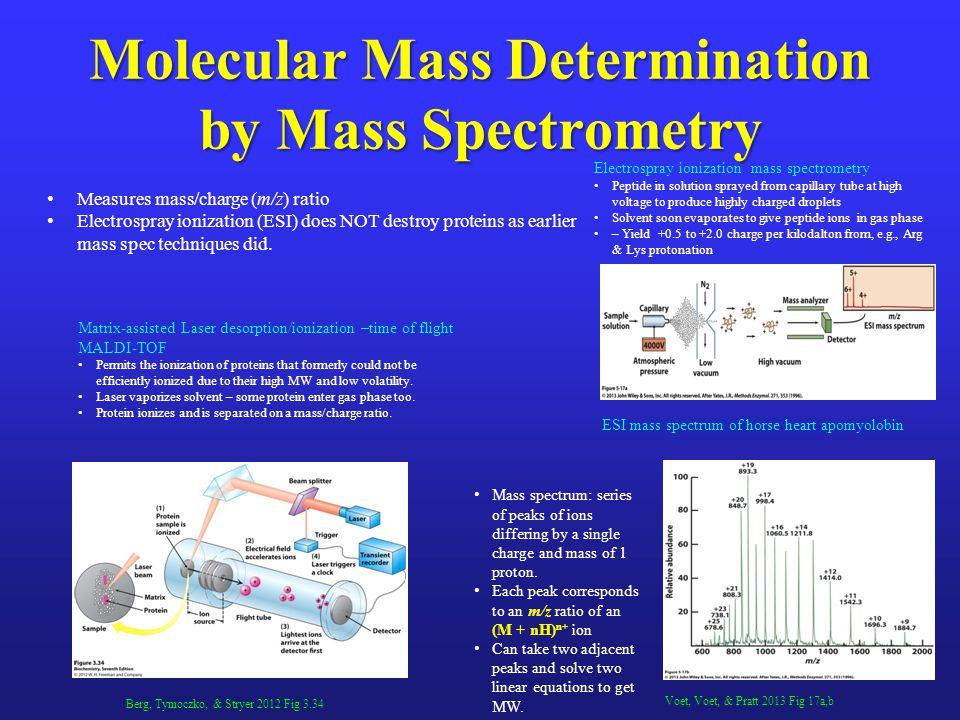 Molecular Mass Determination by Mass Spectrometry