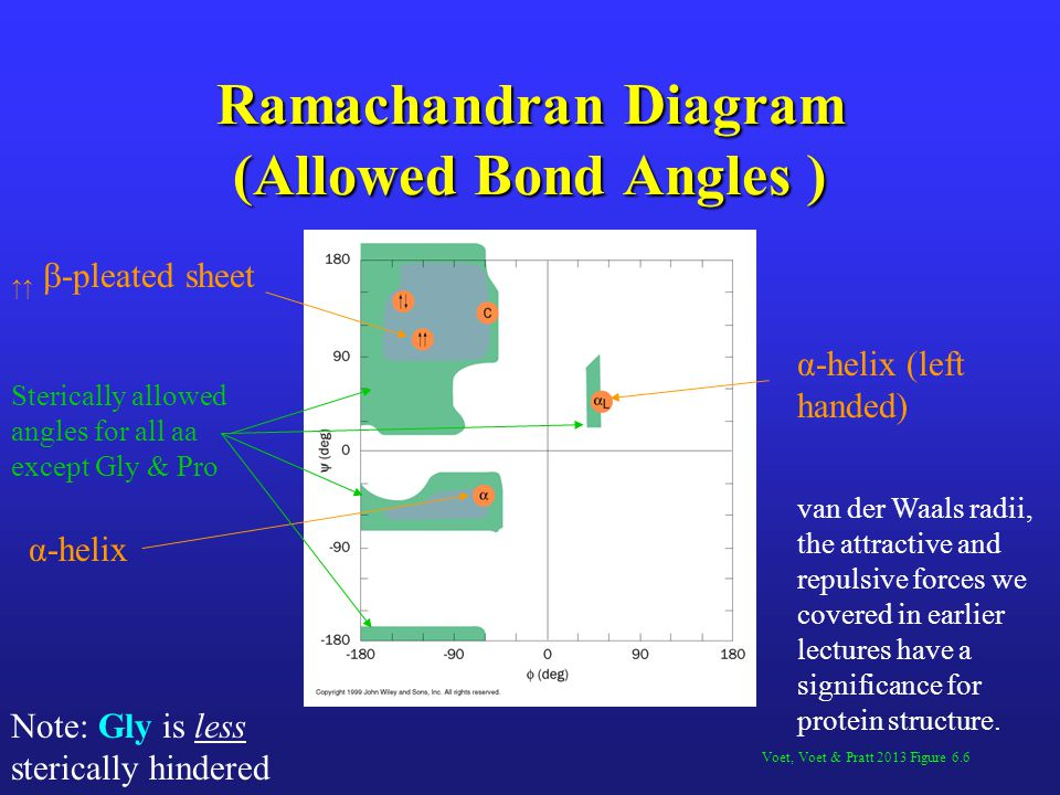 Ramachandran Diagram (Allowed Bond Angles )