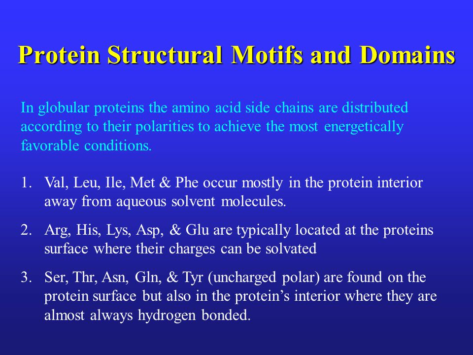 Protein Structural Motifs and Domains