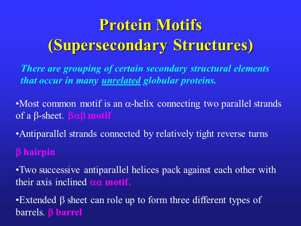 Protein Motifs (Supersecondary Structures)