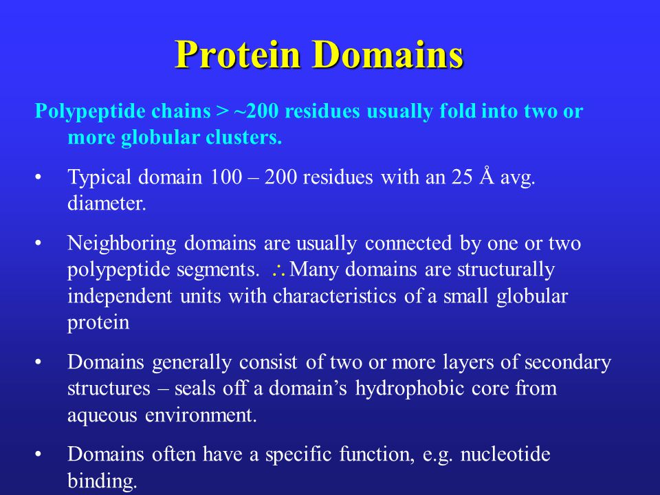 Protein Domains Polypeptide chains > ~200 residues usually fold into two or more globular clusters.