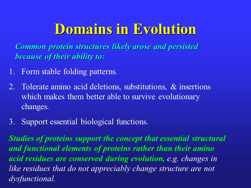 Domains in Evolution Common protein structures likely arose and persisted because of their ability to: