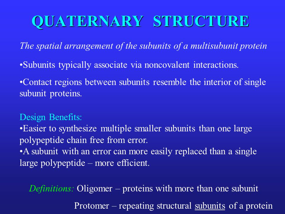 QUATERNARY STRUCTURE The spatial arrangement of the subunits of a multisubunit protein. Subunits typically associate via noncovalent interactions.