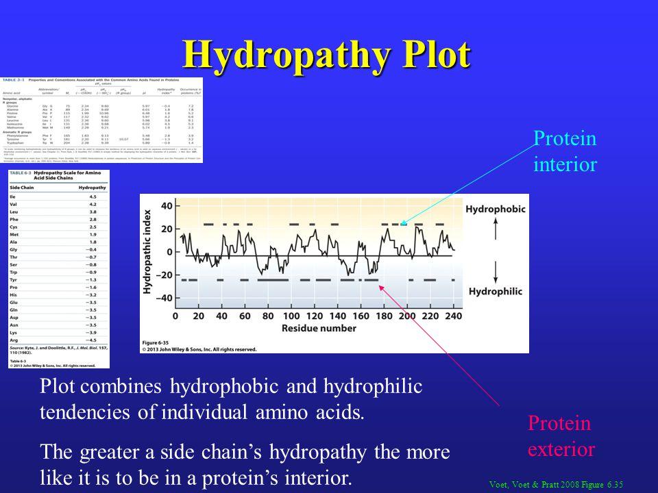 Hydropathy Plot Protein interior