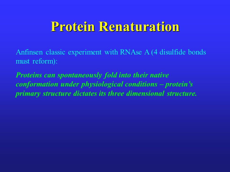 Protein Renaturation Anfinsen classic experiment with RNAse A (4 disulfide bonds must reform):