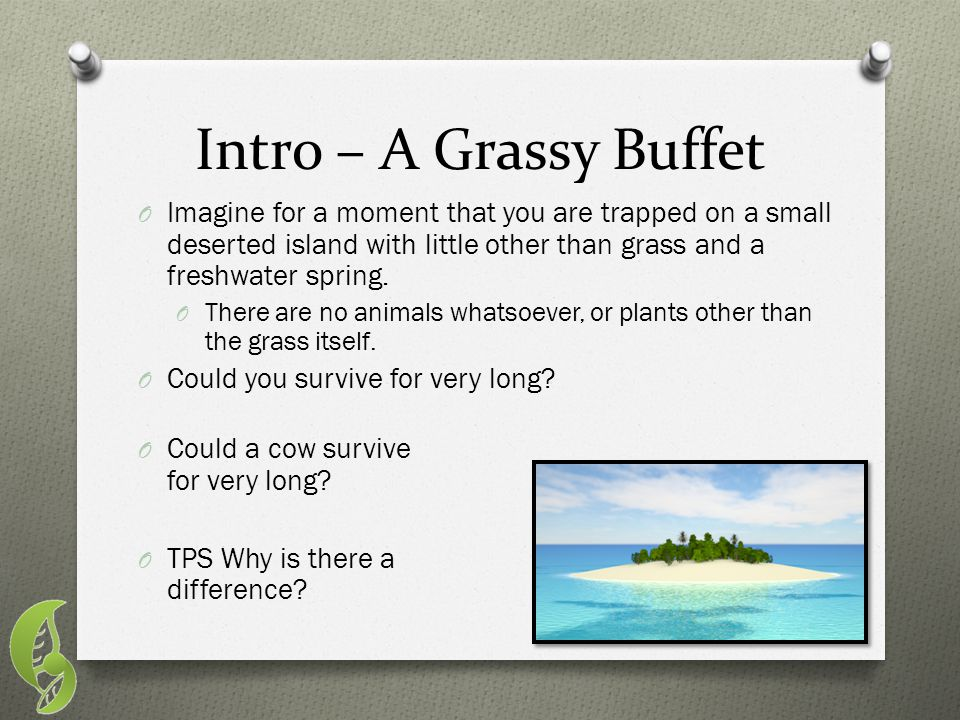 Intro – A Grassy Buffet Imagine for a moment that you are trapped on a small deserted island with little other than grass and a freshwater spring.
