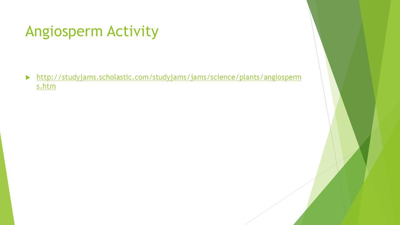 Angiosperm Activity http://studyjams.scholastic.com/studyjams/jams/science/plants/angiosperm s.htm