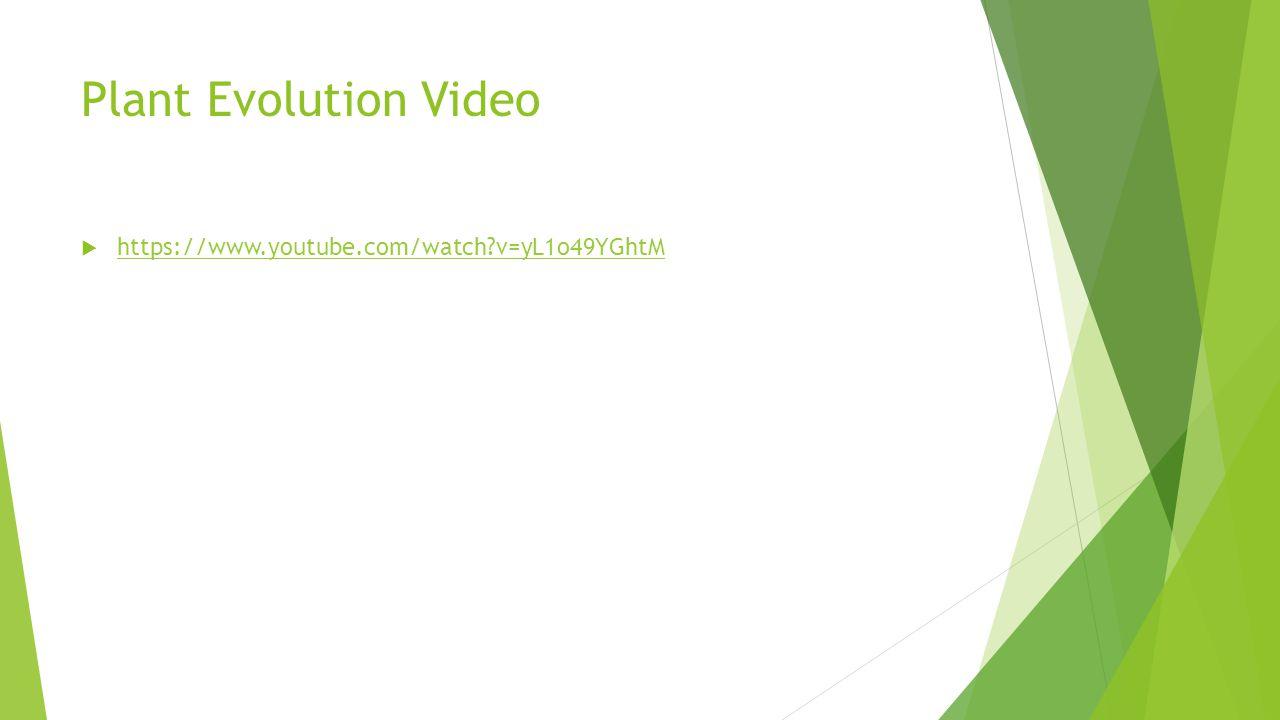 Plant Evolution Video https://www.youtube.com/watch v=yL1o49YGhtM