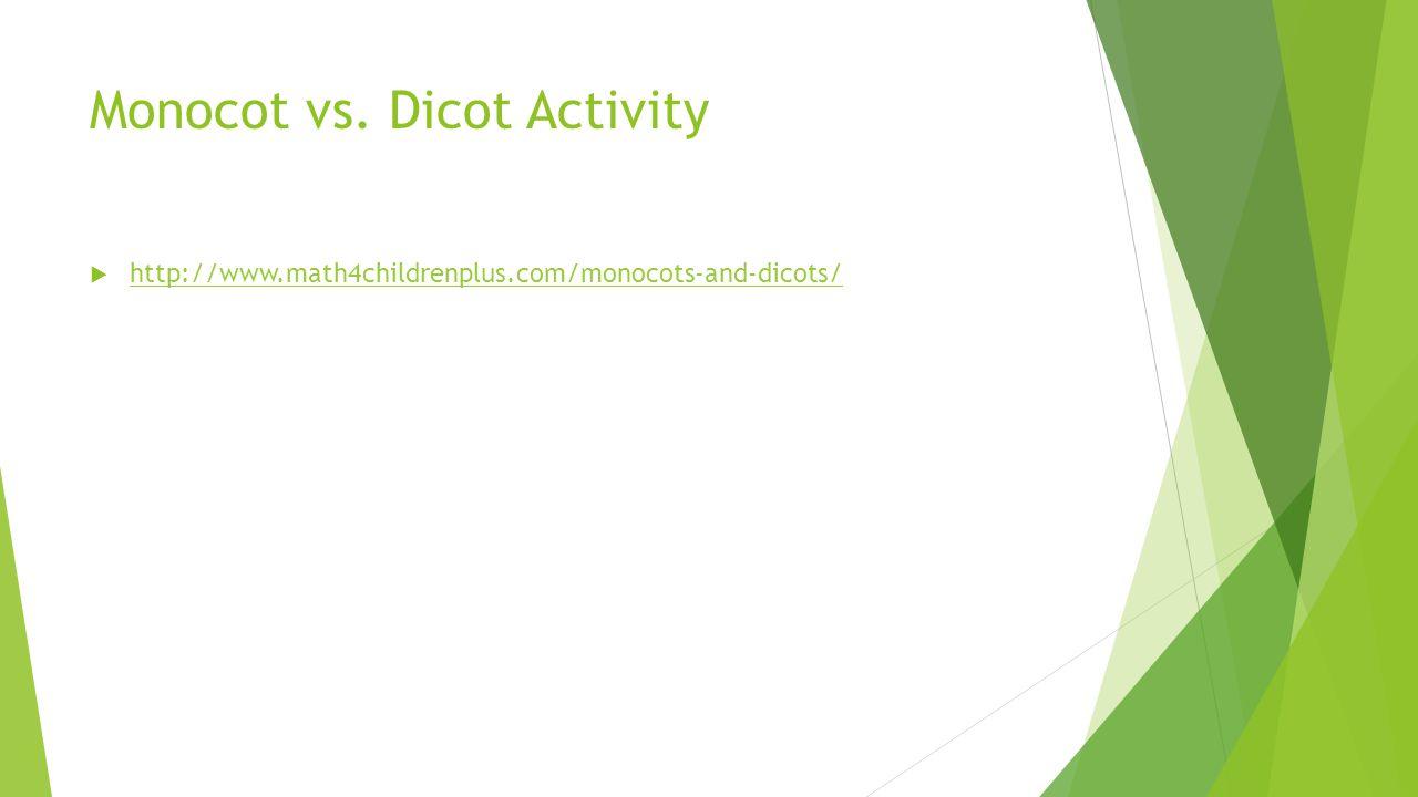 Monocot vs. Dicot Activity