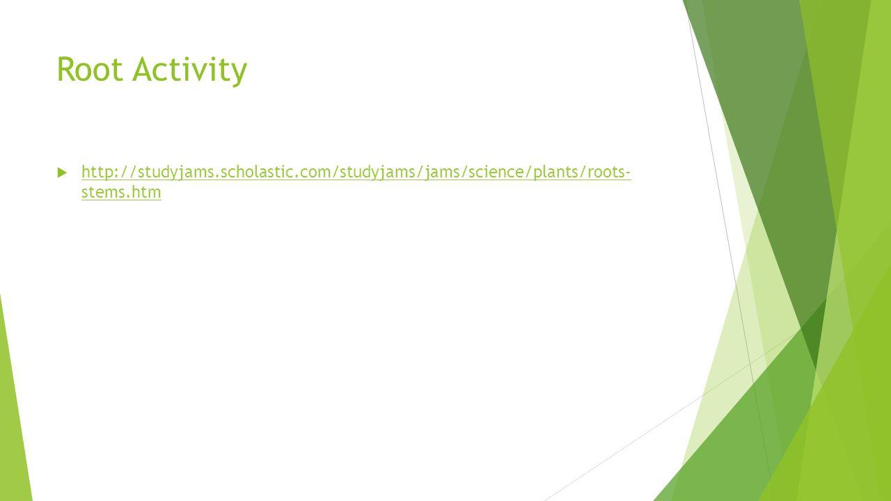 Root Activity http://studyjams.scholastic.com/studyjams/jams/science/plants/roots- stems.htm
