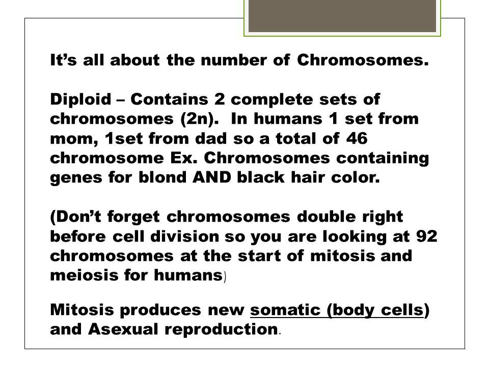 It's all about the number of Chromosomes.