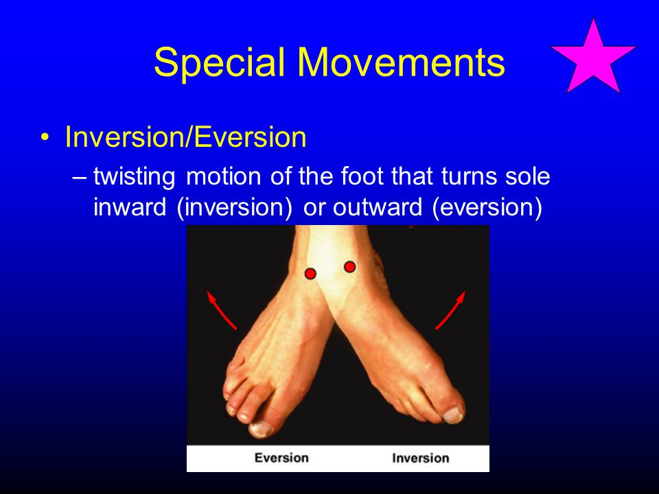 Special Movements Inversion/Eversion