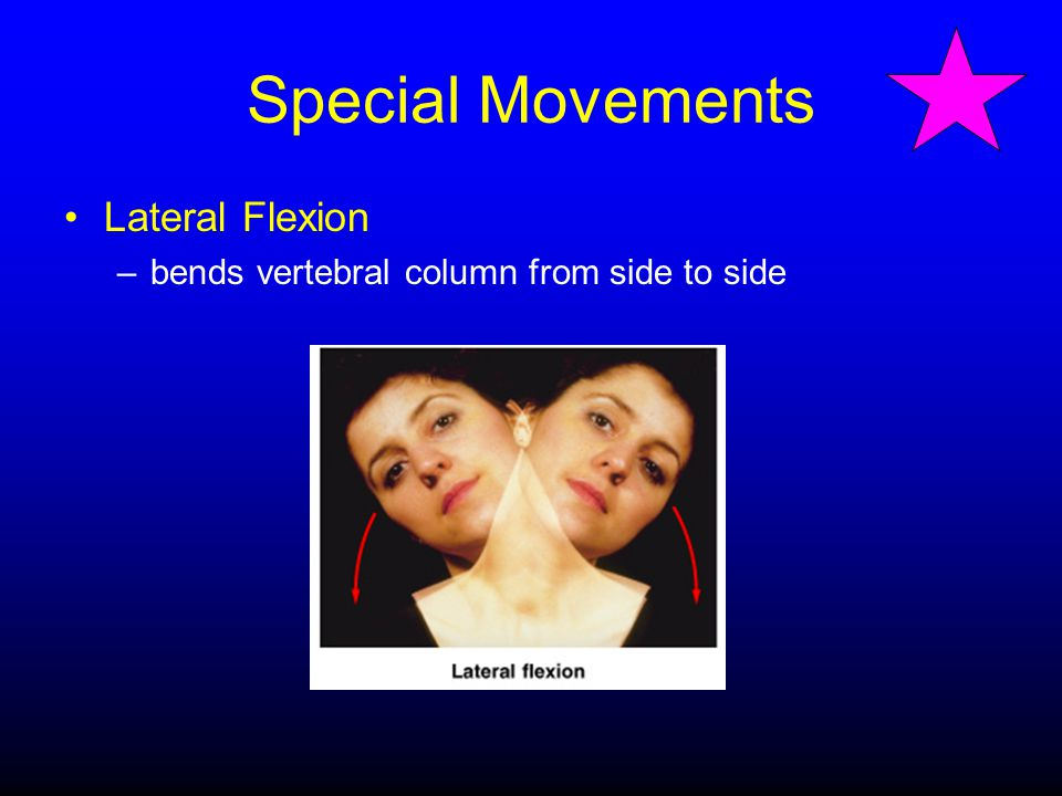 Special Movements Lateral Flexion