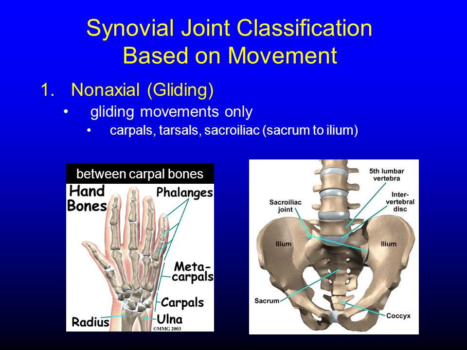 Synovial Joint Classification Based on Movement