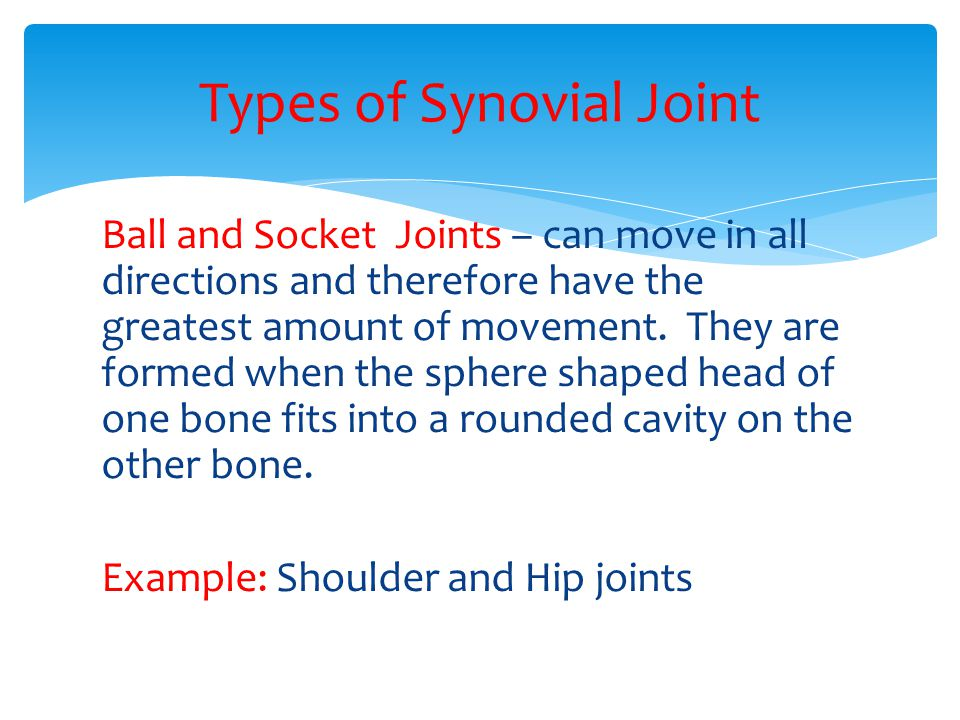 Types of Synovial Joint
