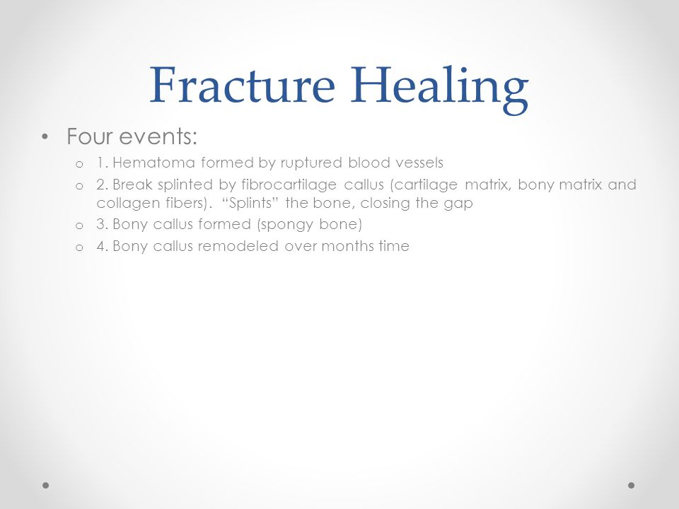 Fracture Healing Four events: