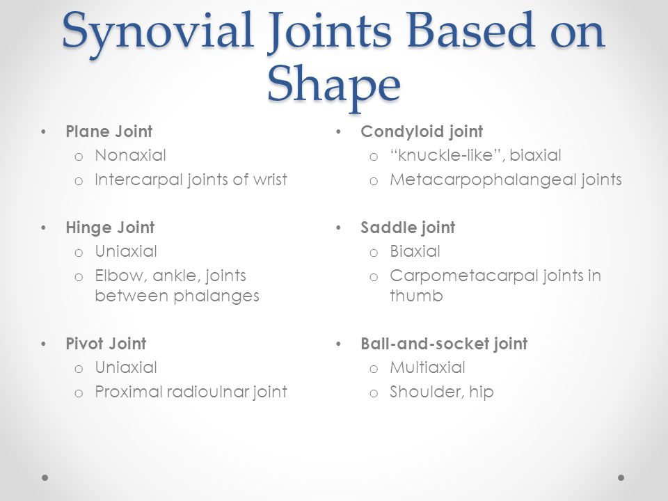 Synovial Joints Based on Shape