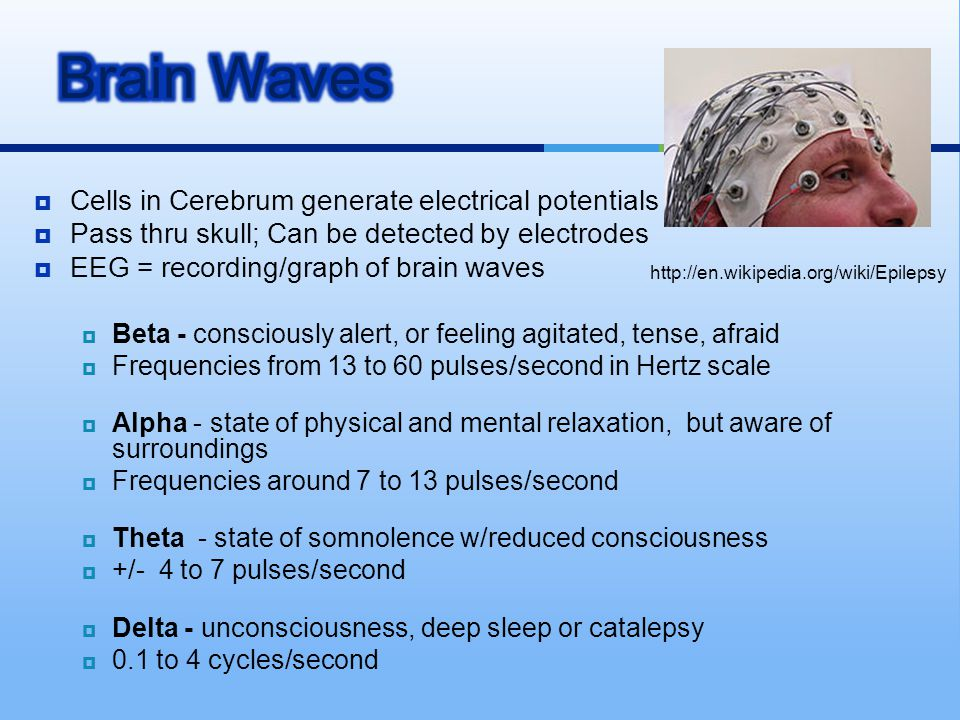 Brain Waves Cells in Cerebrum generate electrical potentials