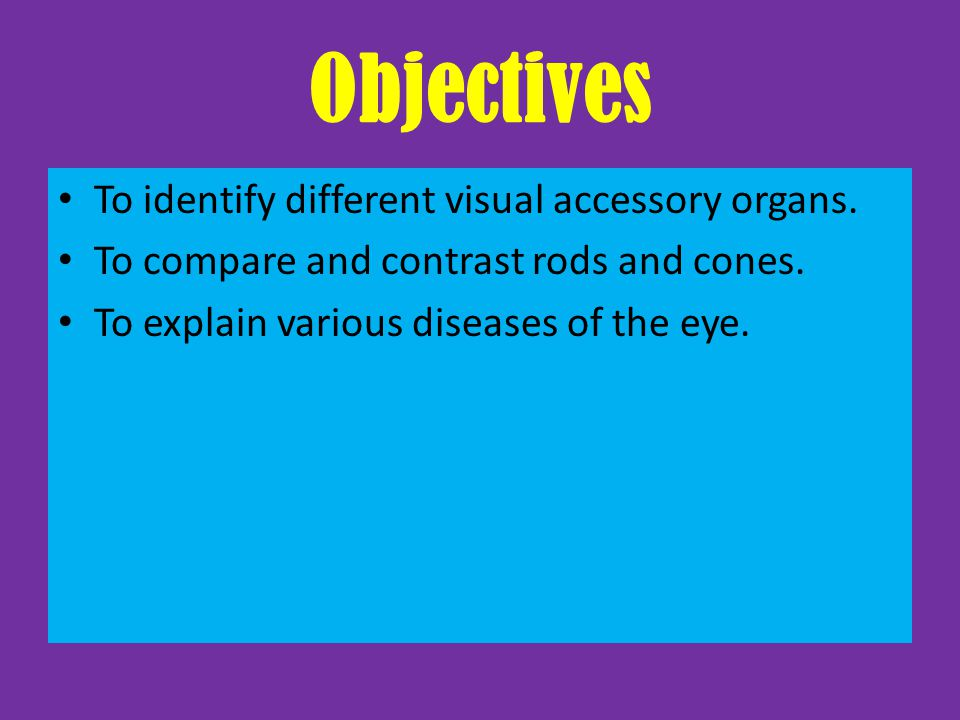 Objectives To identify different visual accessory organs.