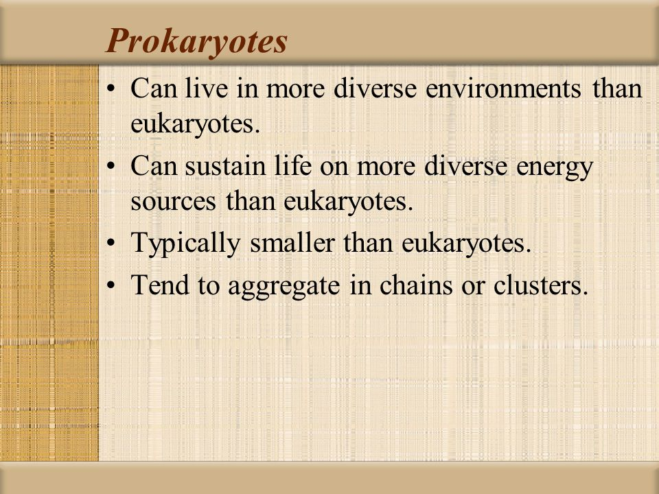 Prokaryotes Can live in more diverse environments than eukaryotes.