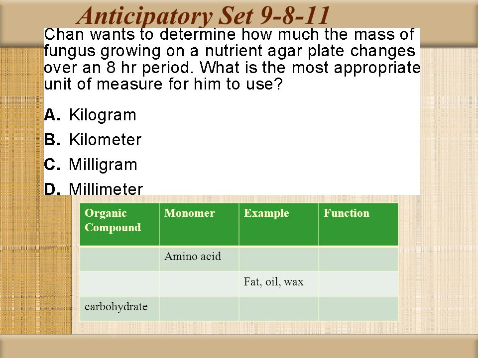 Anticipatory Set 9-8-11 Organic Compound Monomer Example Function