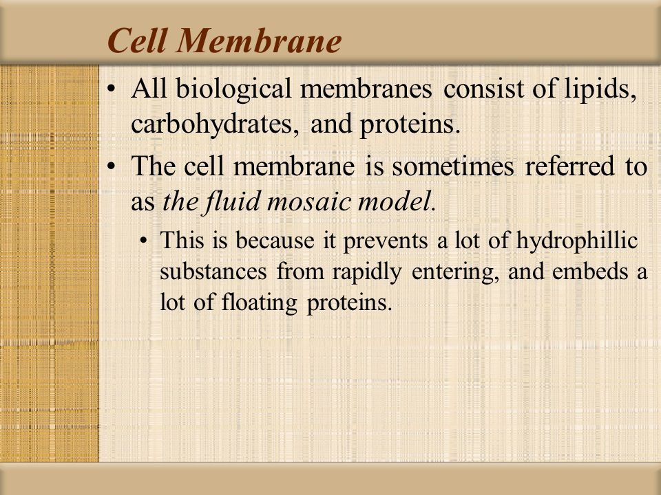 Cell Membrane All biological membranes consist of lipids, carbohydrates, and proteins.
