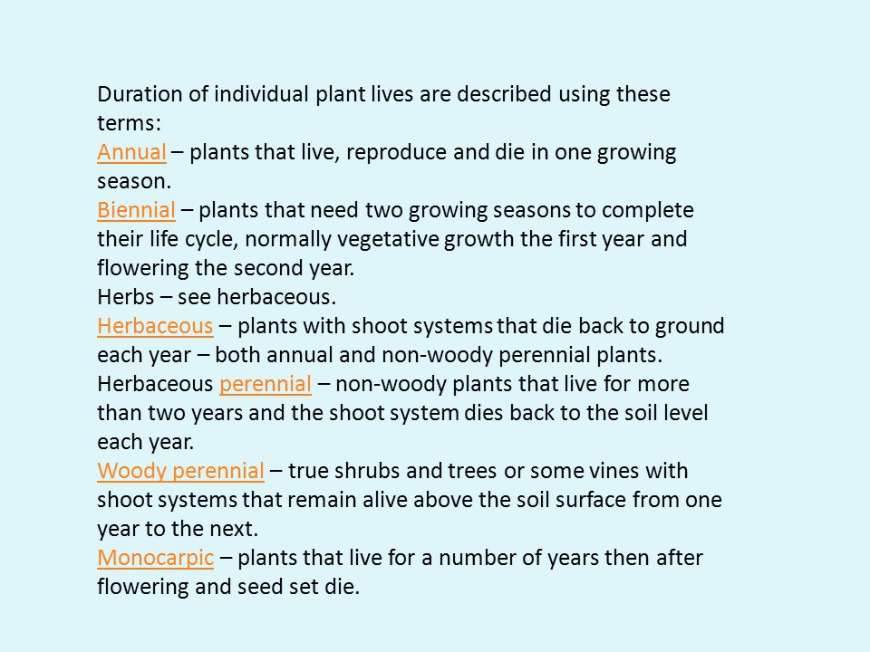 Duration of individual plant lives are described using these terms: