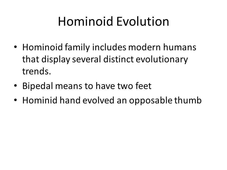 Hominoid Evolution Hominoid family includes modern humans that display several distinct evolutionary trends.