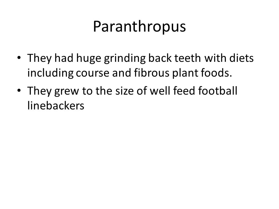 Paranthropus They had huge grinding back teeth with diets including course and fibrous plant foods.